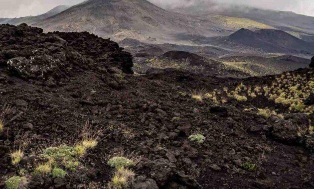 Jenis-Jenis Tanah, No Terakhir Tak Ada di Indonesia