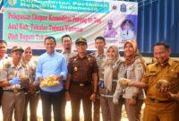 50 Ton Porang Diekspor ke Vietnam