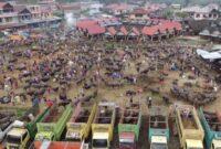 Buffalo Market in North Toraja South Sulawesi Indonesia
