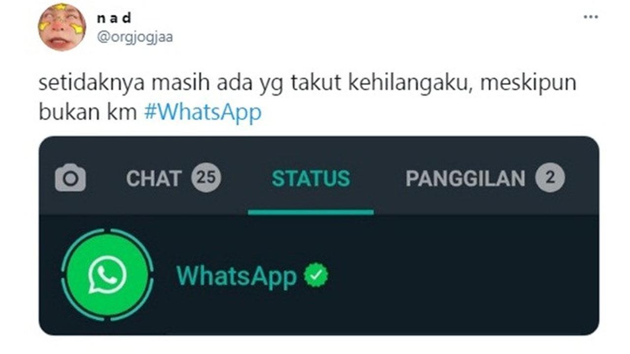 Status WhatsApp Muncul di Status Pengguna, Tranding di Twitter