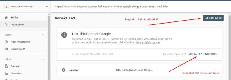 Cara Agar Artikel Website Terindex Google dengan Cepat Tanpa Backlink